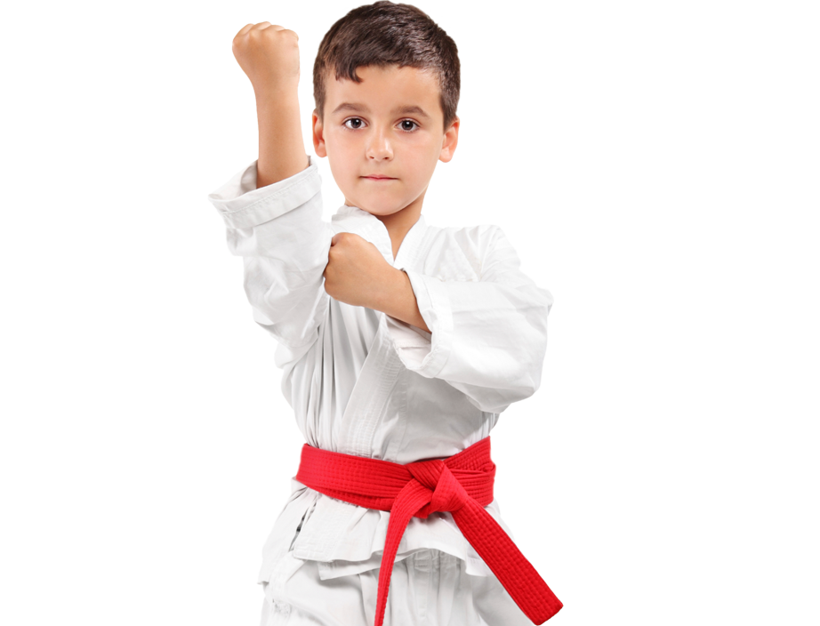 young boy in karate stance